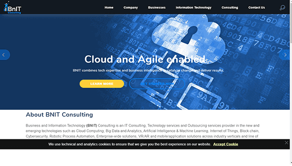 Website Hosting & SSL Certificate - BNIT Consulting