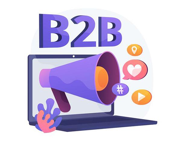 B2B Website Development
